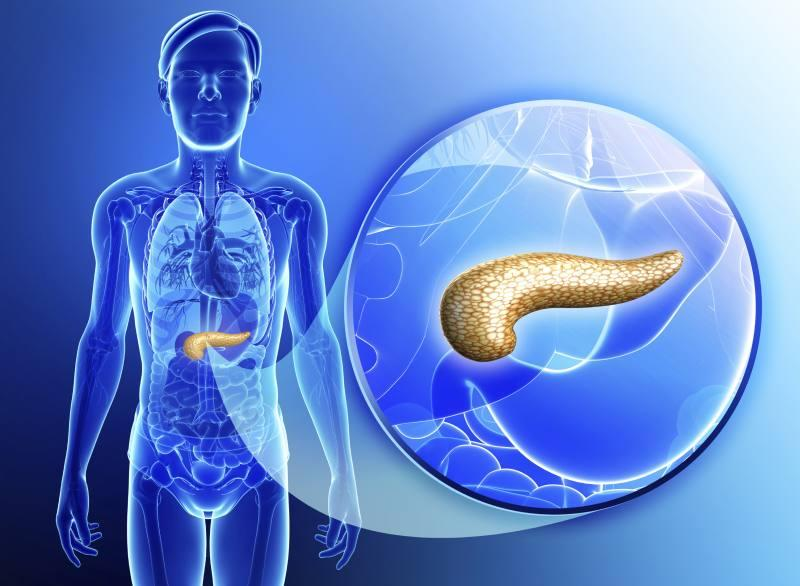 It's Terrible for the Pancreas