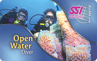 Open Water Diver - 1st SCUBA Certification