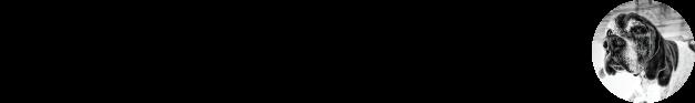 Paladar Noir