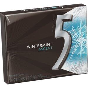 5 Gum Wintermint Chewing Gum