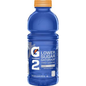 Gatorade G2 Grape 20oz
