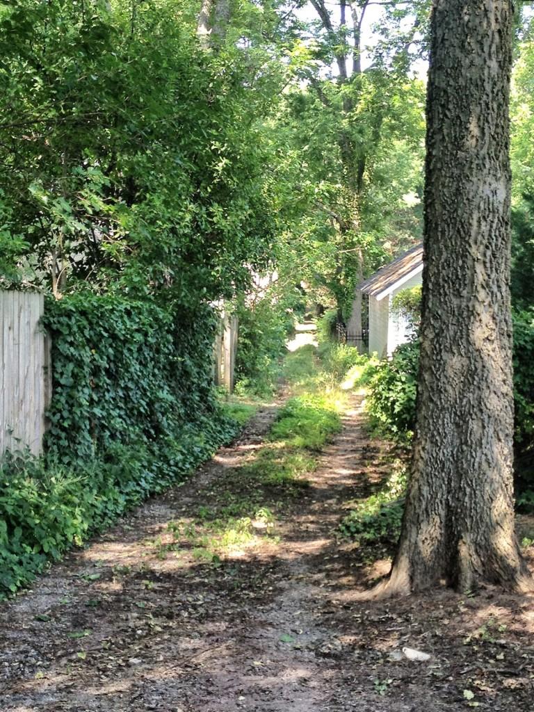 A Virginia-Highland alley