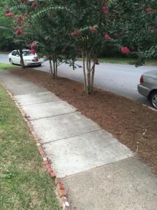 Repaired_Sidewalk