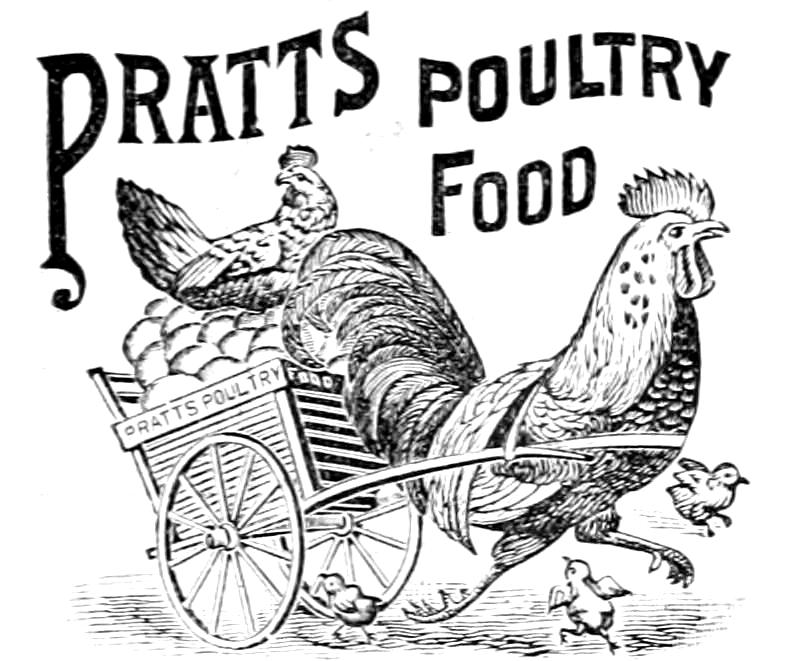 Pratts poultry food