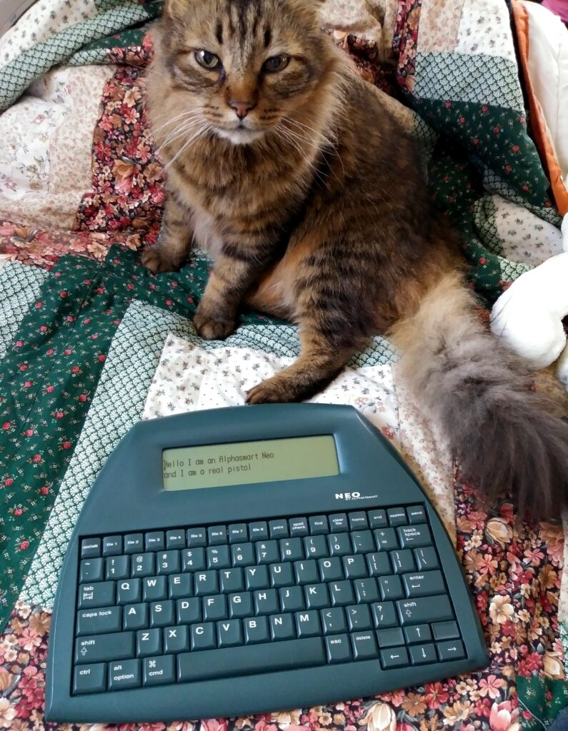 Shimmer the cat with my Alphasmart Neo