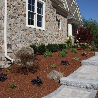 Norwell residential new construction plantings