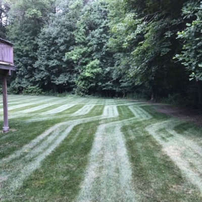 Residential Lawn Maintenace