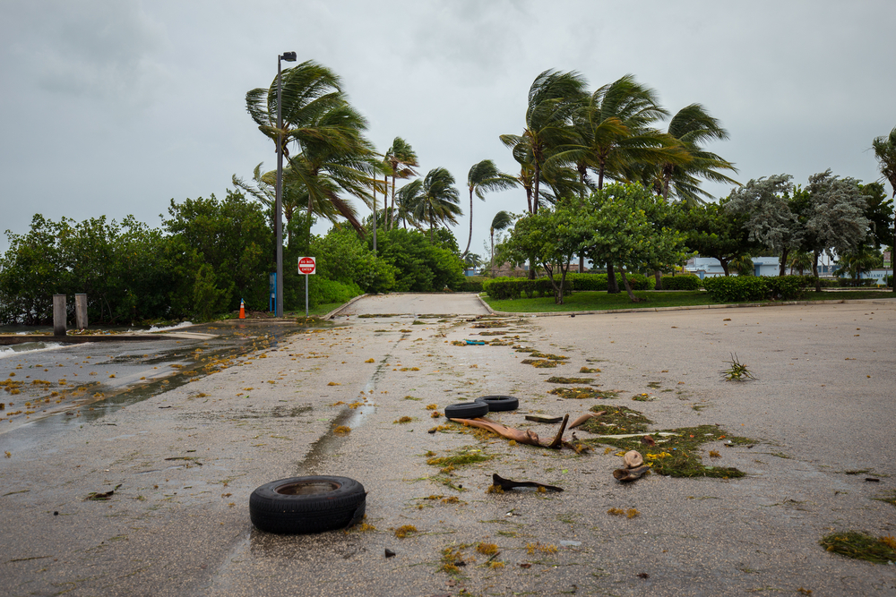 Hurricane Safety Tips You Need To Know