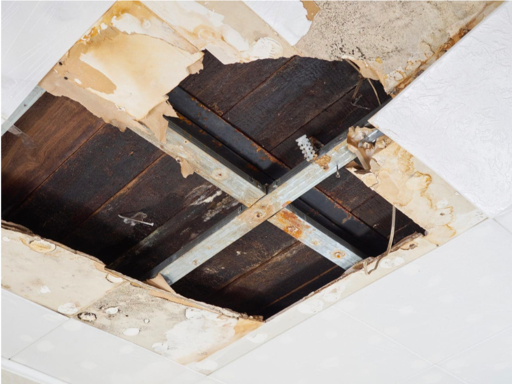 Essential FAQs About Water Restoration And Your Home