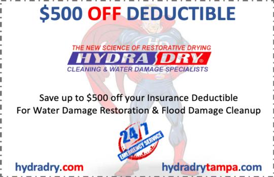 Water Damage Restoration Riverview Florida