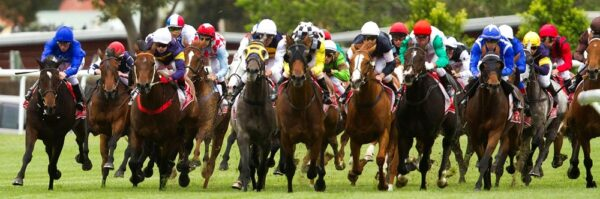Melbourne Cup 2020 NYC