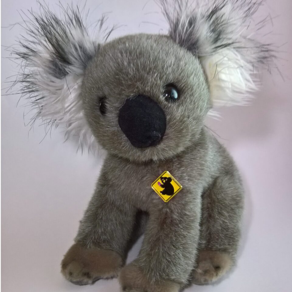 Injured koala pin