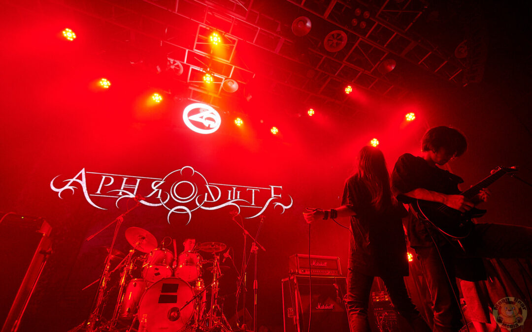 Aphrodite乐队 playing at Ola Livehouse in Nanjing China 2019