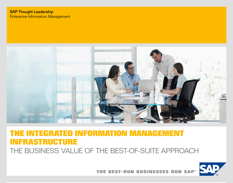 The Integrated Information Management Infrastructure