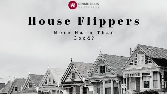House Flippers Did They Cause More Harm Than Good?