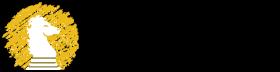 Paladin Healthcare Logo