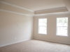 Master Bedroom Vaulted Ceiling