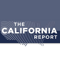 cal-report-org-icon