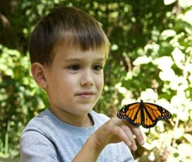 This photo shows a boy who is converging his eyes to look closely at a butterfly that has landed on his finger