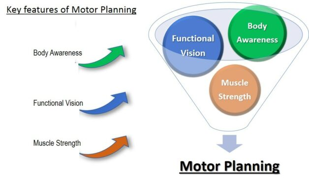 This diagram of key features for motor planning shows a funnel with balls labeled Functional Vision, Body Awareness, and Muscle Strength slipping down through the funnel.