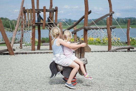 photo of two girls looking at a wooden playground sculpture