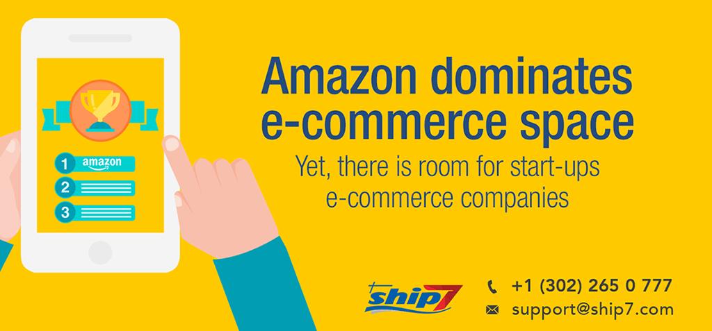 Despite domination of Amazon there still room for newcomers to succeed in e-commerce