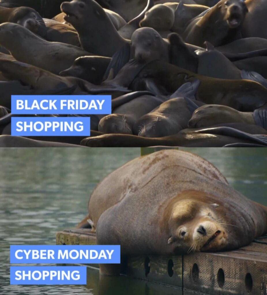 Black Friday and Cyber Monday Meme