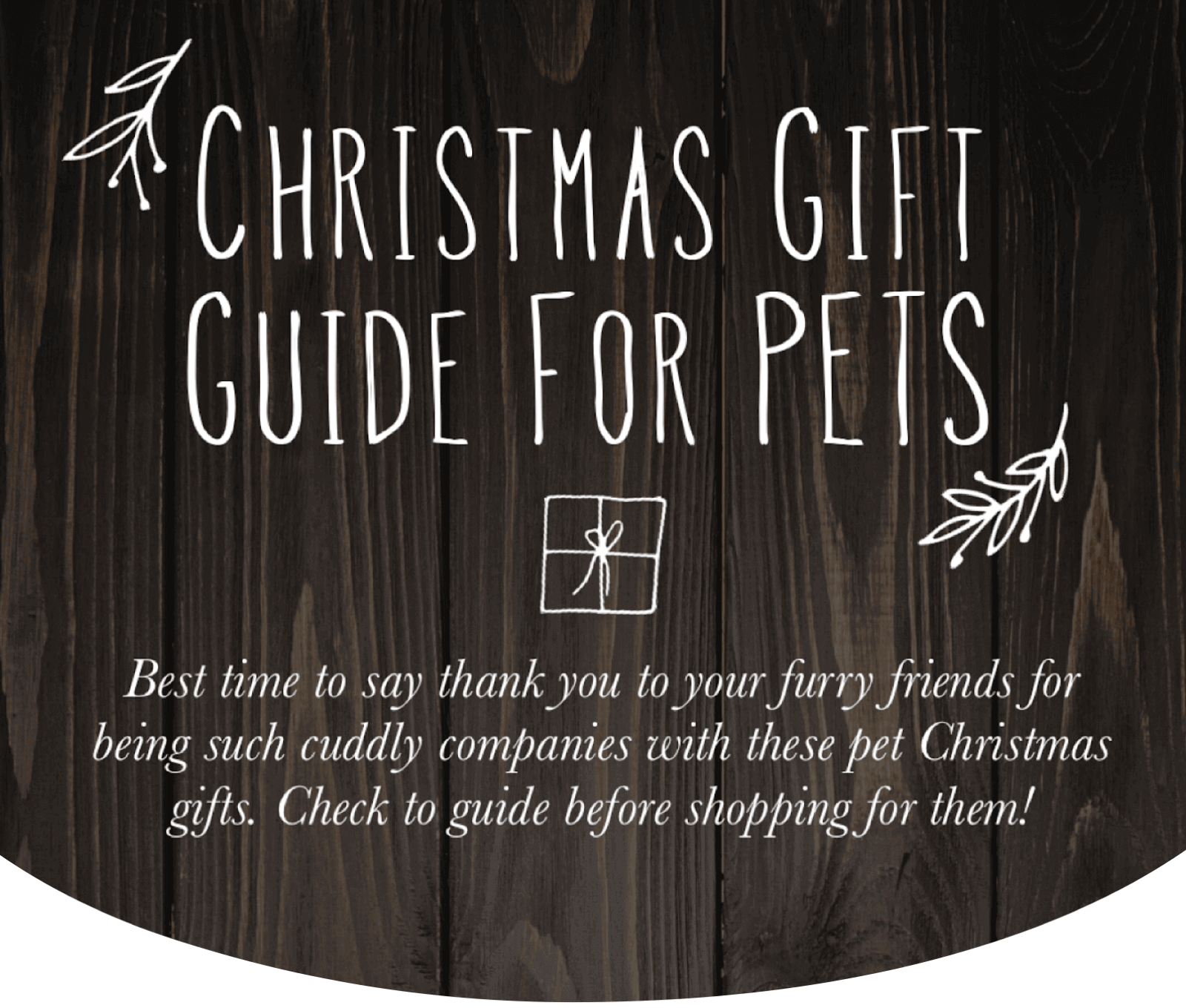 Christmas Gift Guide For Pets