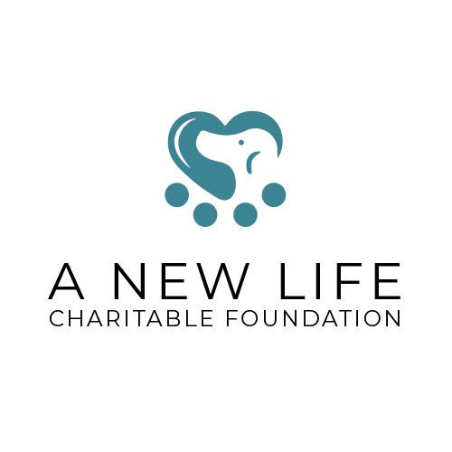 nonprofit-dog-rescue-logo-design-marketing-web-design