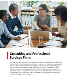Accounting and Professional Services Firms