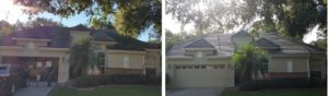 Roof tile cleaning before and after