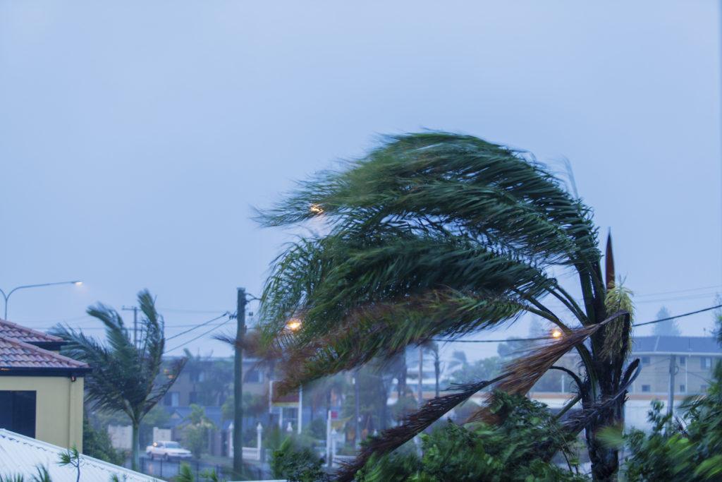 Florida Wind Mitigation Company