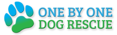 One By One Dog Rescue