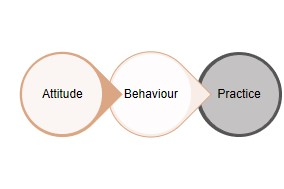 attitude behaviour practice 1