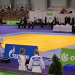 2010 World Kata Championships Gallery