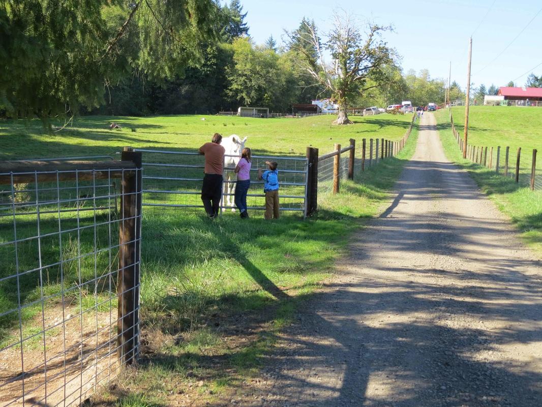 KP Farm Tour visitors saying hello. Photo credit: David Montesino