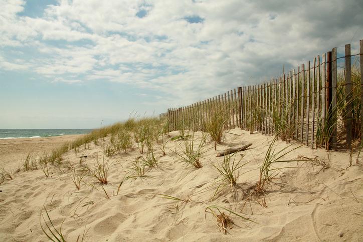 Wooden fence running along dunes