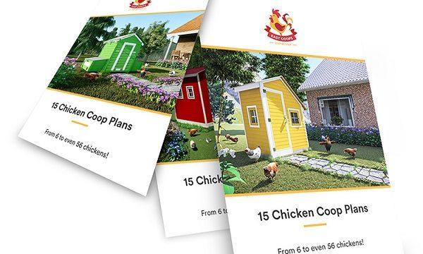15 Diy Chicken Coop Plans Review – easycoops.com a Scam?