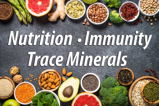 Minerals and Immune Function