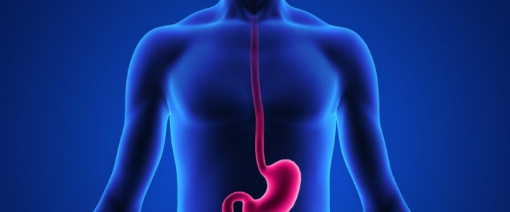 Irritable bowel poor gut health