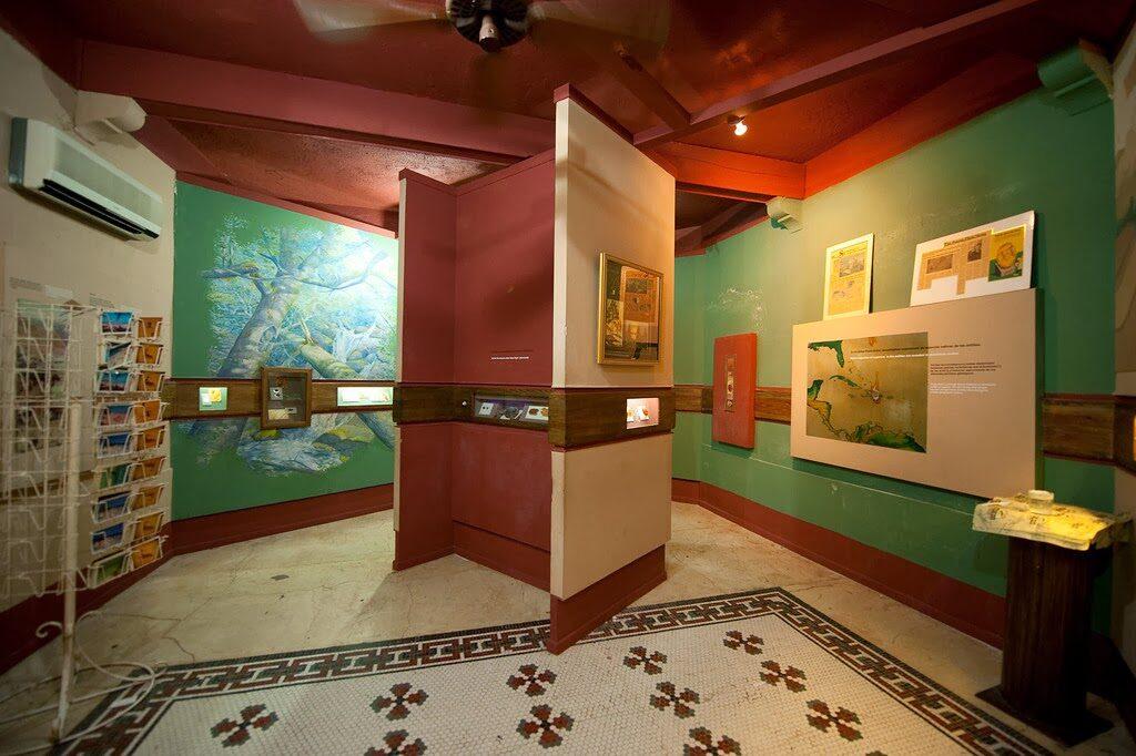 museo ambar