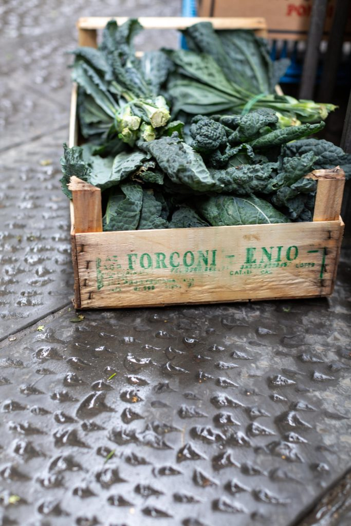 Kale, Florence, Italy by Judith Rae