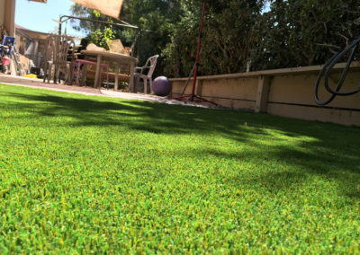 Natural Sod Platinum Installed in San Jose, CA
