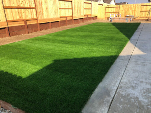 Bluegrass Supreme Turf Installed in Hollister, CA