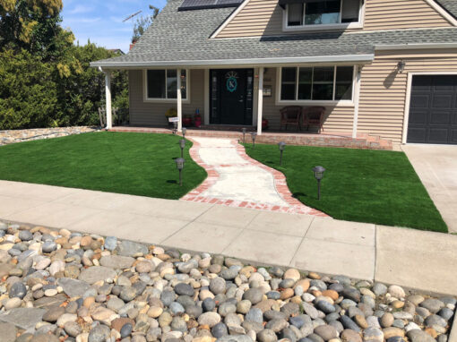 Bluegrass Supreme Turf Installed in San Jose, Ca