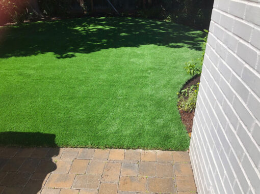 Bluegrass Supreme Turf Installed in Santa Clara, Ca