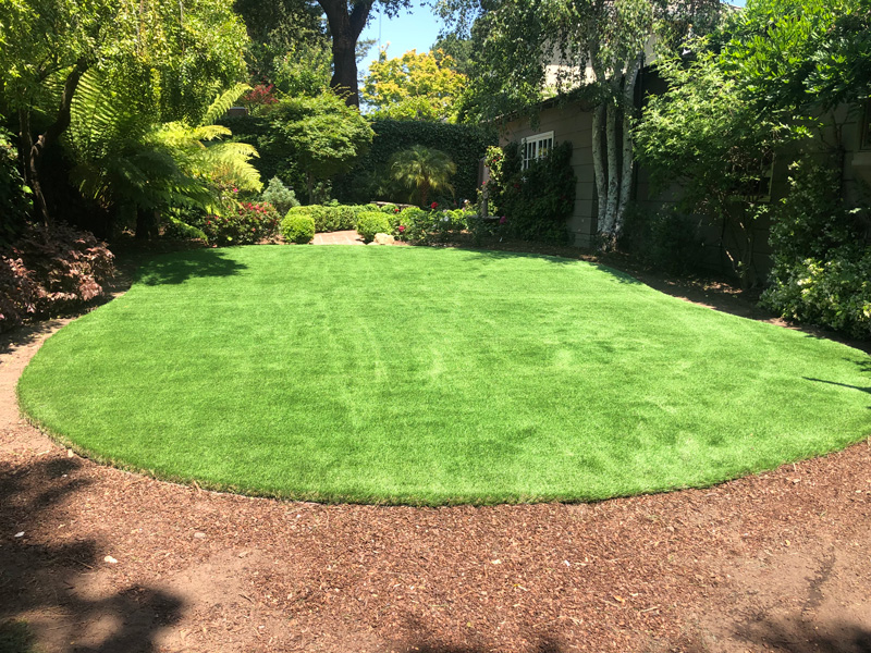 Bluegrass Supreme Turf installed in Menlo Park, CA