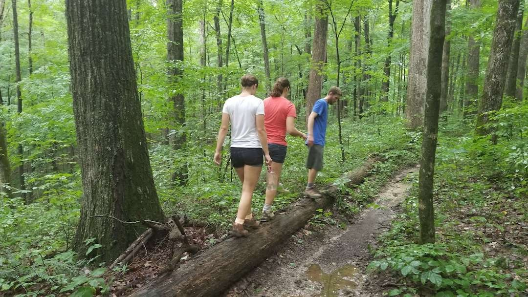 Two girls and a man walking on a log nature forest