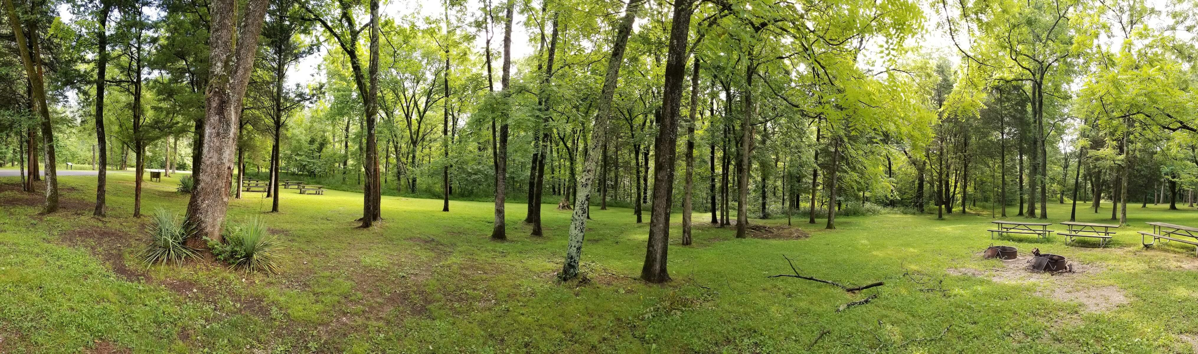 Maple Springs Campground Mammoth Cave