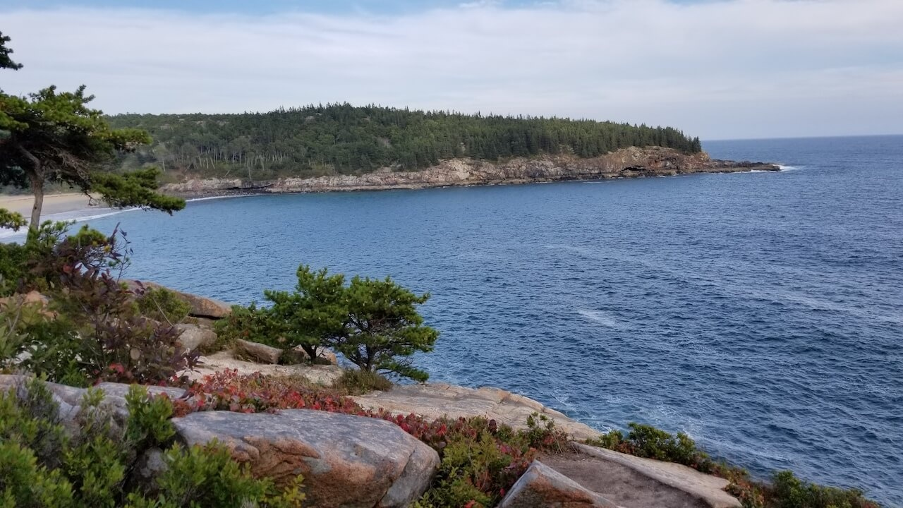 View from Ocean Path Acadia National Park rocky cliffs trees and ocean